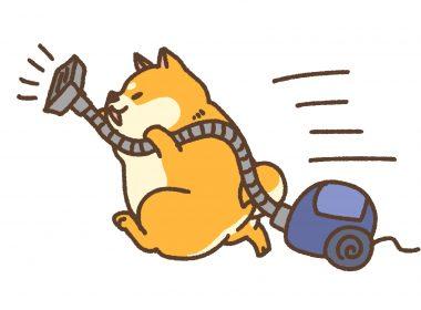 年末大掃除の風水:ほこりは大敵!