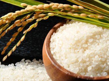とっても便利な米びつ