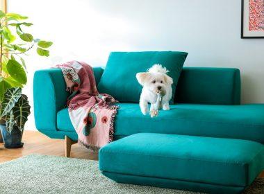 カラフルな北欧風スタイル・カリモク家具のハイグレードソファ「UU40モデル」